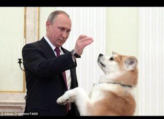 Ο σκύλος του Πούτιν