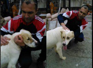 Βόλος: Υιοθέτησε τον σκύλο