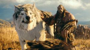 Warcraft sequel