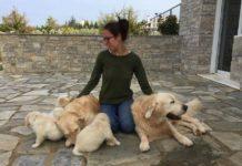 Διαισθητική Επικοινωνία με τα ζώα