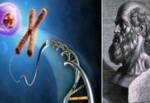 Ιπποκράτης: Κάθε νόσος ξεκινά πρώτα από την ψυχή και μετά καταλήγει στο σώμα