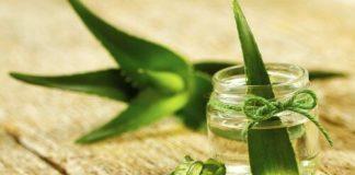 Τα οφέλη της aloe vera για την περιποίηση του δέρματος.