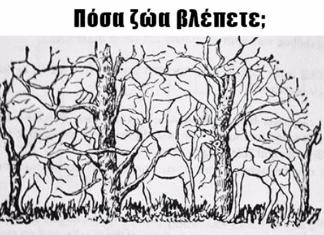 Πόσα ζώα βλέπετε;